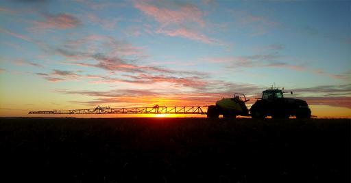 NAVIGATOR Sunset